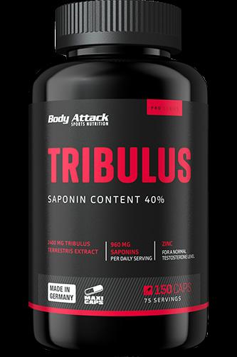 Body Attack Tribulus 2400, 150 Kapseln